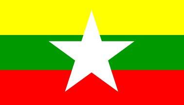 new-flag